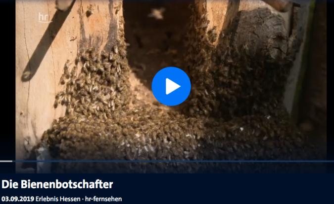 Bildschirmfoto 2019-10-10 um 22.05.15